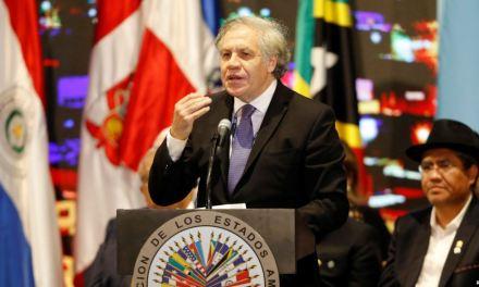 OEA presenta informe sobre crisis migratoria de Venezuela en su 49 Asamblea General
