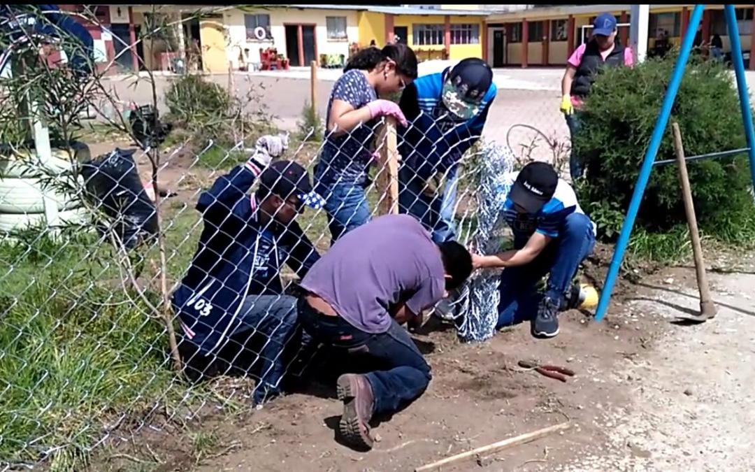 Estudiantes crean huerto pedagógico