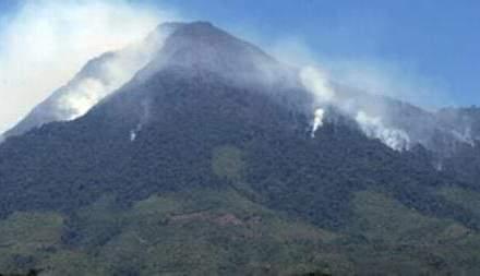 Brigadas buscan controlar incendio en el cerro Pecul