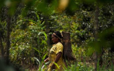 Minería ilegal venezolana: A debate crimen transnacional, desplazamiento y violencia