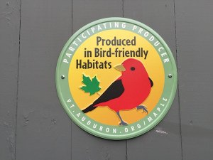 Bird friendly maple sign