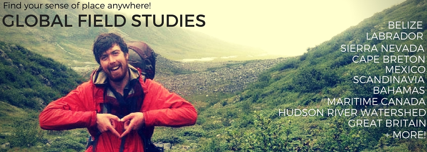 Global Field Studies