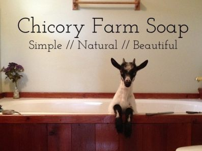 Chicory Farm Soap