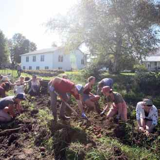 Photo of students digging in the garden