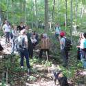 a group of people in the forest practicing wildcrafting