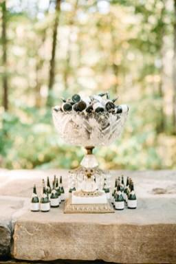 kaitlin_nash_wedding16hr-78