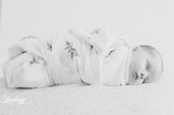 lyla_newbornint-54