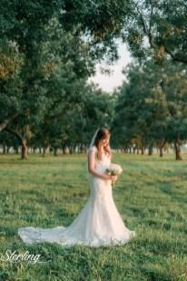 Taylor_bridals(int)-31
