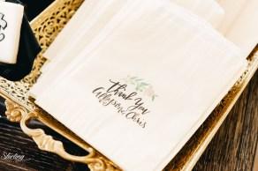 Allyson_chris_wedding(int)-431