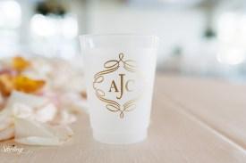 Allyson_chris_wedding(int)-542