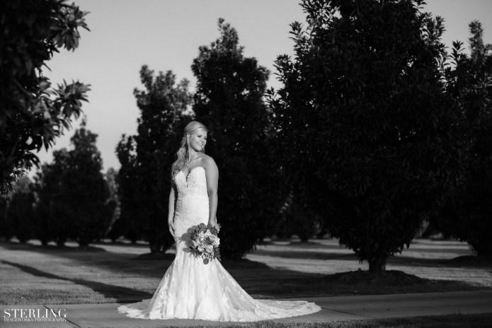 Taylor_bridals(i)-108