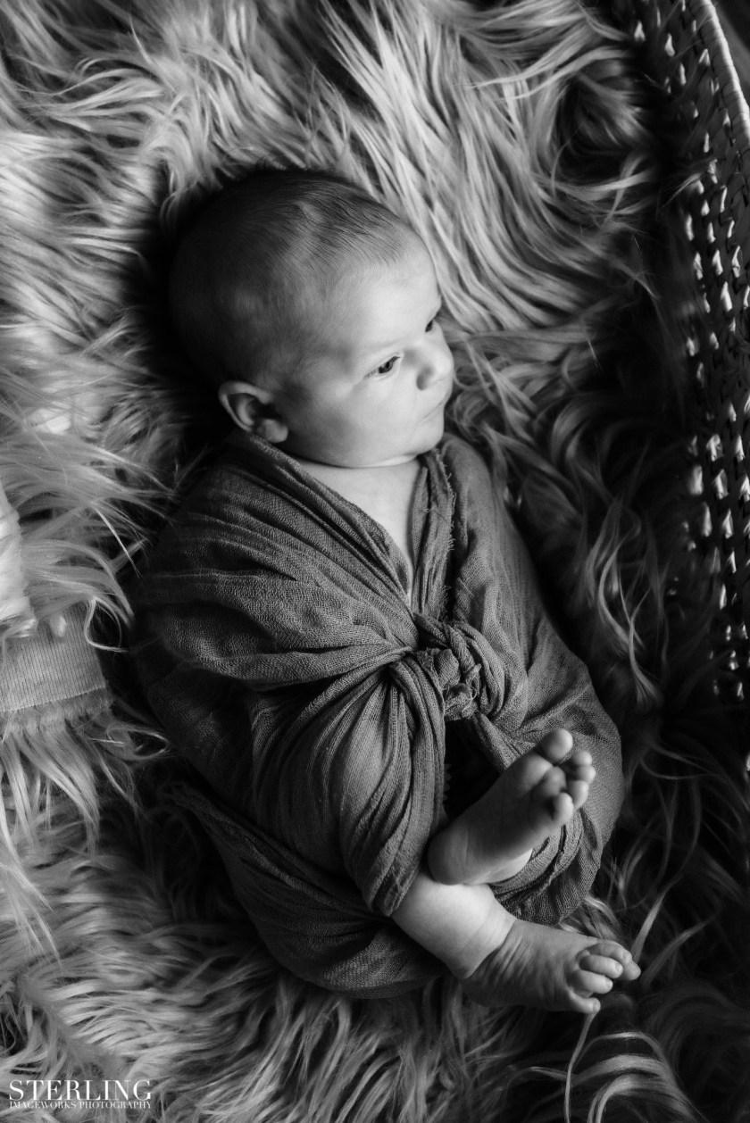 Carter_mae_newborn(i)-32