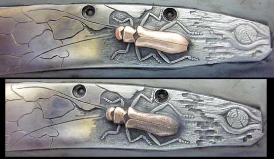 William_Henry_B10_Longhorn_Beetle_30