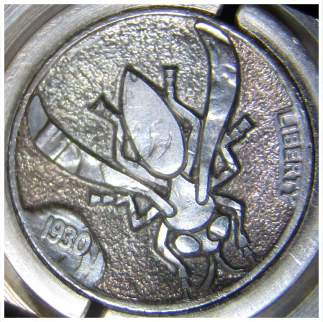 Yellow_Jacket_Hobo_Nickel_Tutorial_5