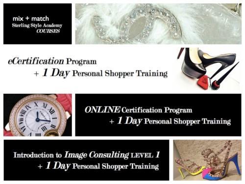 Mix + Match 1 Day Personal Shopper Training Program