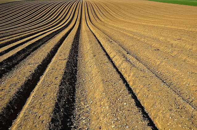 How Do Changes In U.S. Cotton Production Impact Cotton Prices?