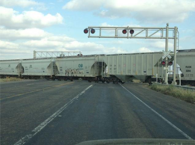 A Train Cut Me Off