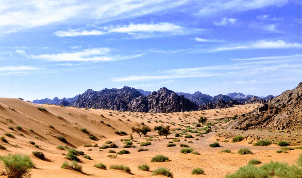 The Hajez