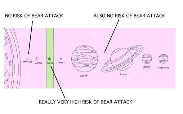 Risk Of Bear Attack Chart