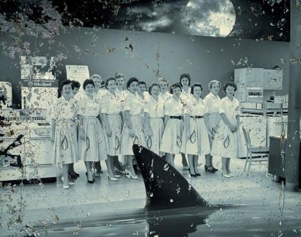 50sWomenShark