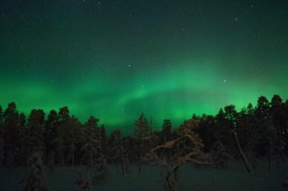 Polarlichter über Luosto