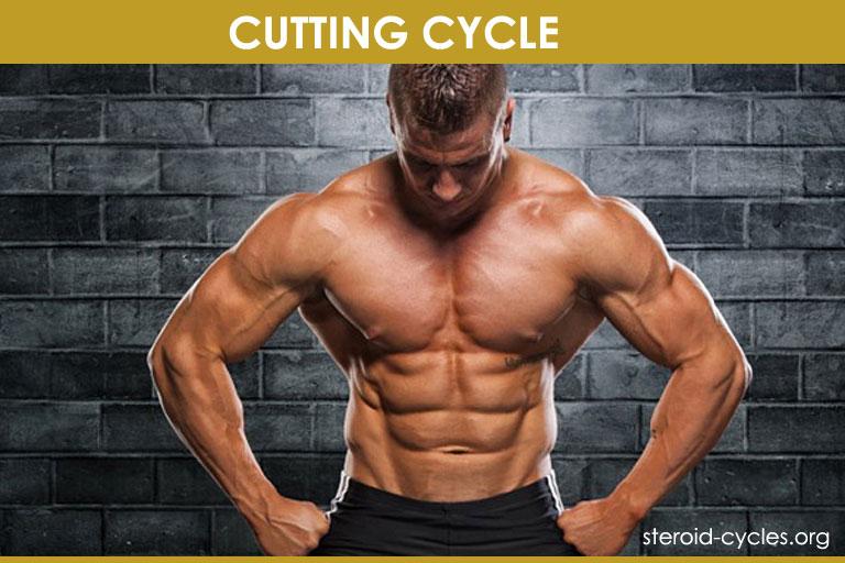 Cutting Cycle Stack: Best Legal Steroids for Cutting and Lean Body [2020]