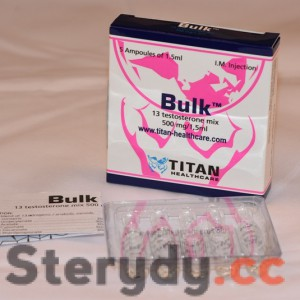 Bulk (Mix 13 testosteronów 500mg)