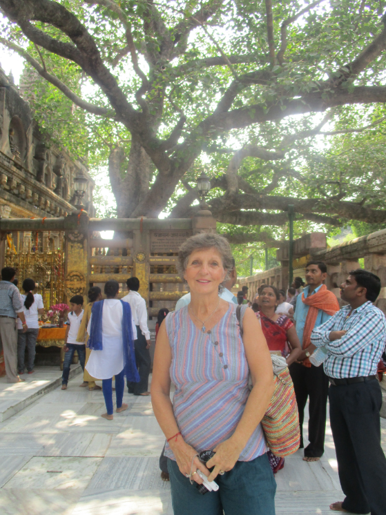 Sheila under the bodhi tree