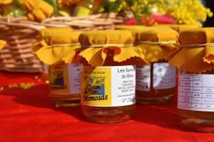 Fête Du Mimosa – Tanneron