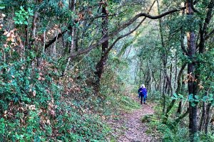 Hiking from Vence to Saint-Paul de Vence
