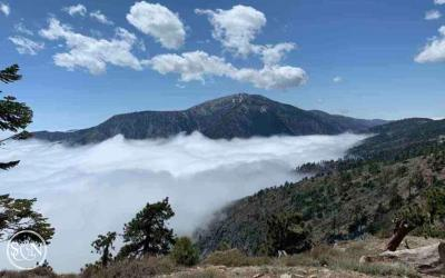 PCT: Day 42