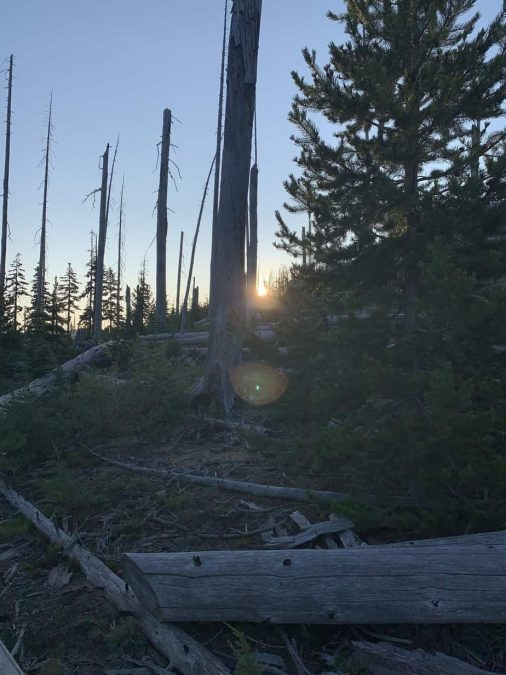 PCT: Day 131
