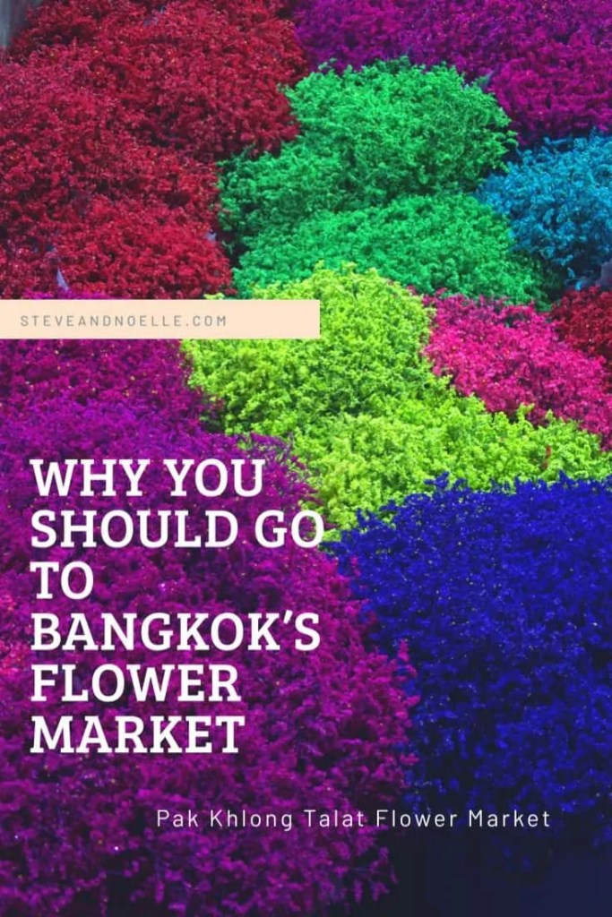 Introduction to Bangkok's flower market