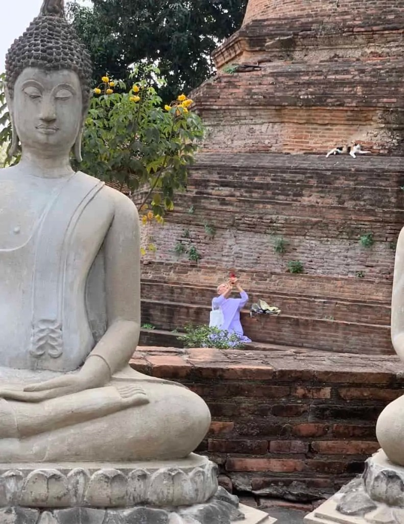 Nun taking a picture while relaxing near a stupa. A cat naps near her.