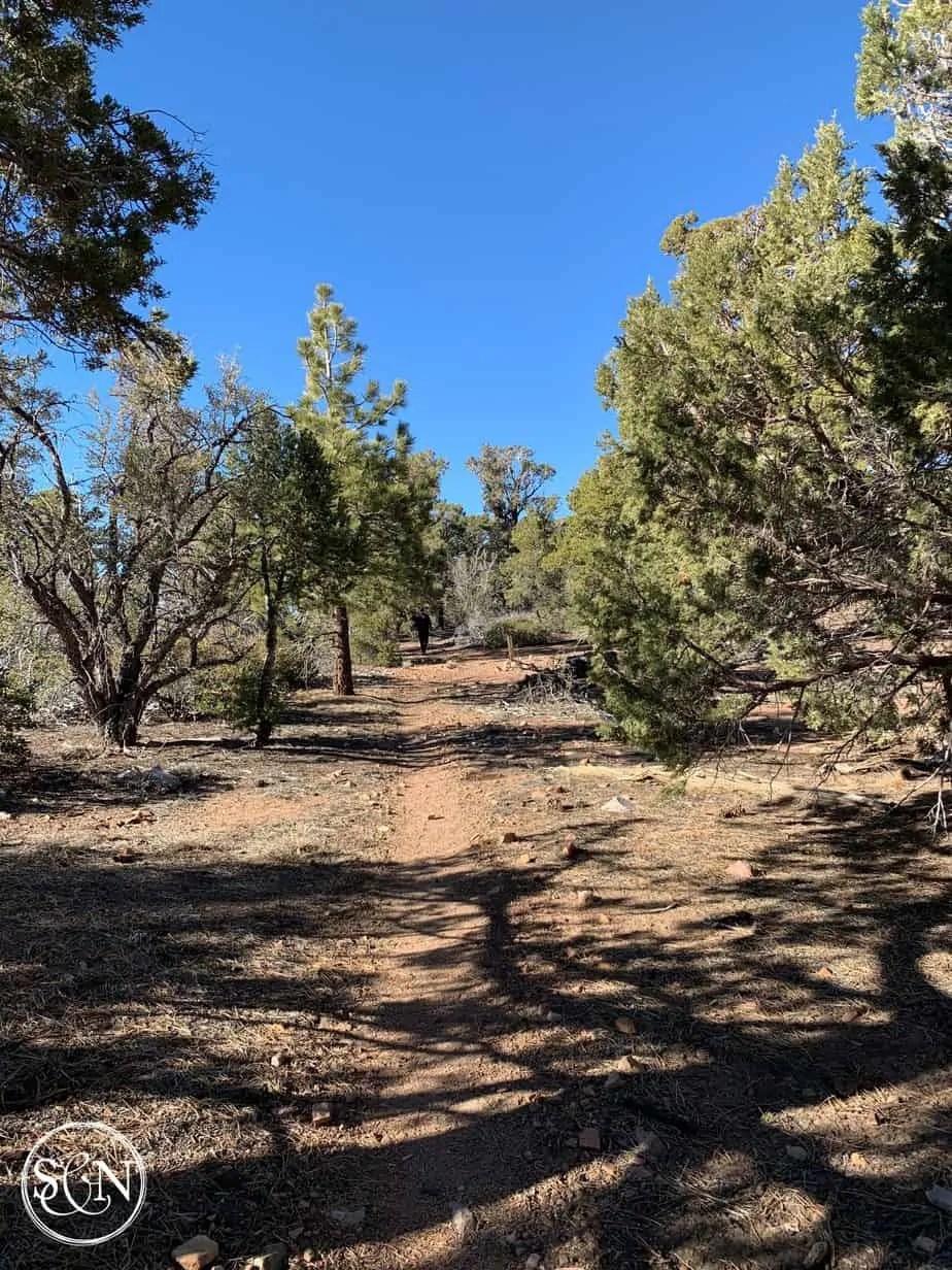 Soft dirt trail