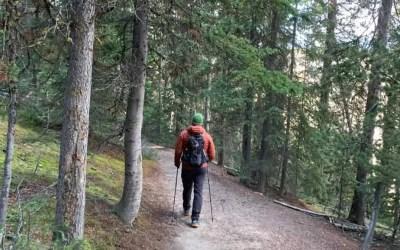 Clear Lake Trail Day-Hike in Yellowstone