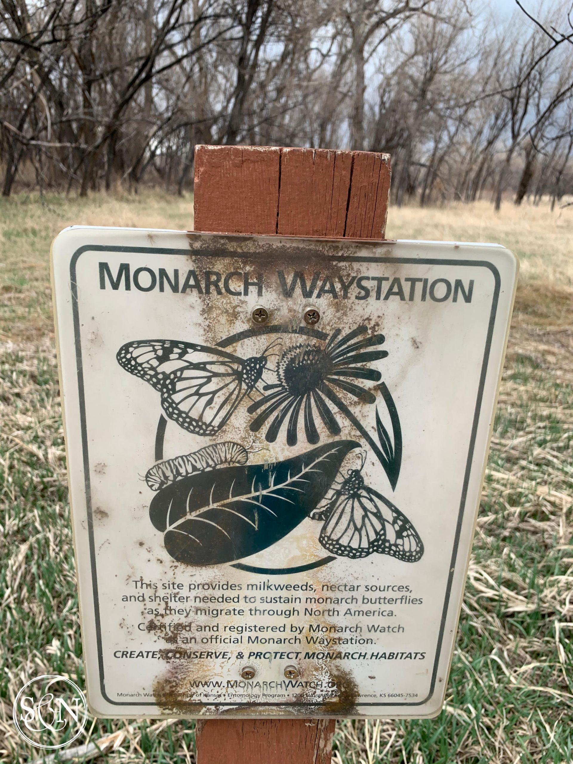 Monarch Butterfly Waystation