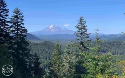 PCT: Day 146