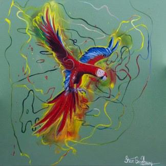 Macaw_web