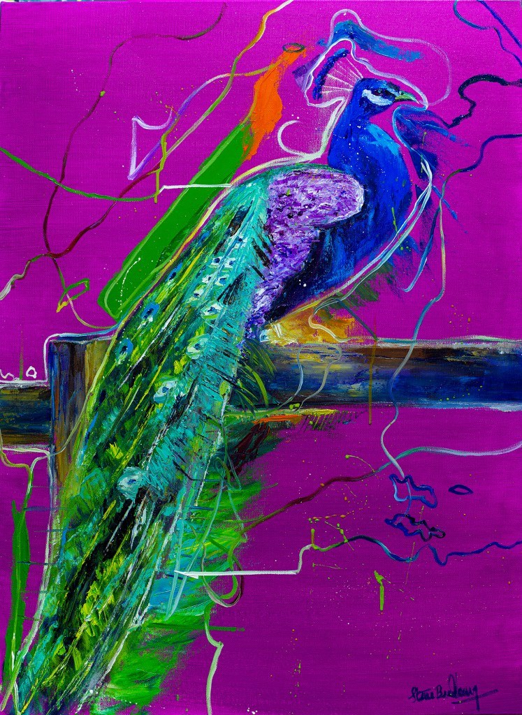 Peacock - web