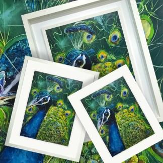 Plume fine Art Giclee Prints