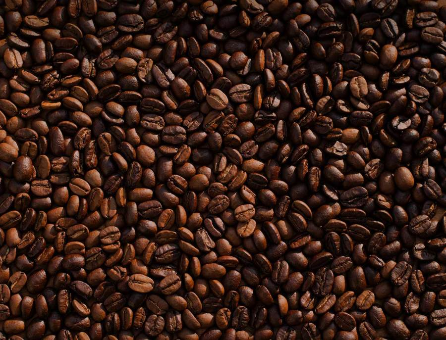A pile of freshly-roasted coffee beans