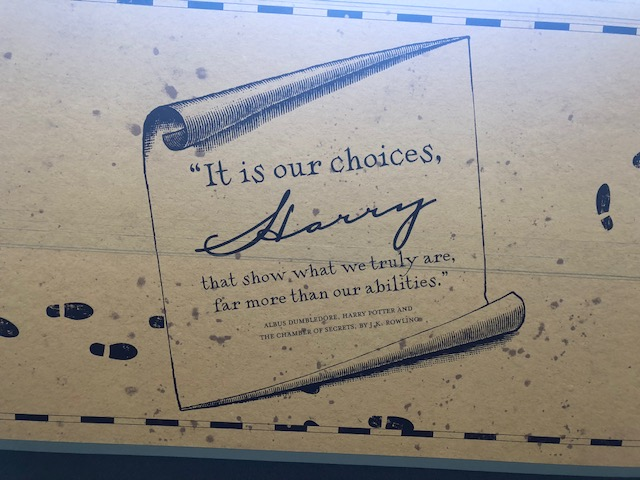 It is our choices, Harry, that show what we truly are, far more than our abilties