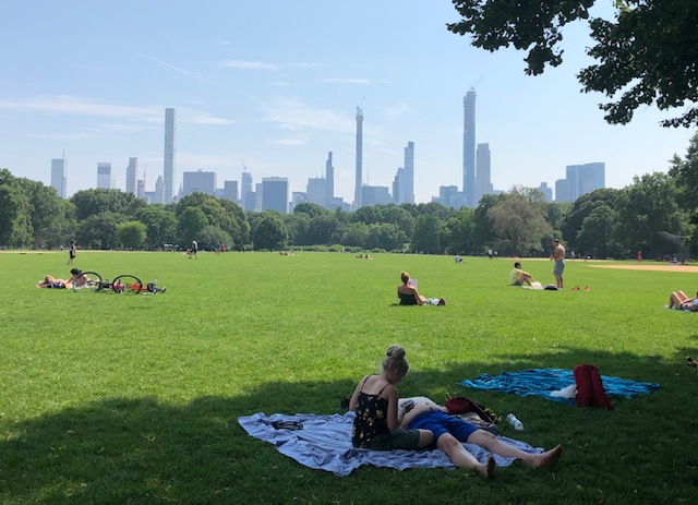 Open field, people laying about on blankets (or not), with the skyline in the background