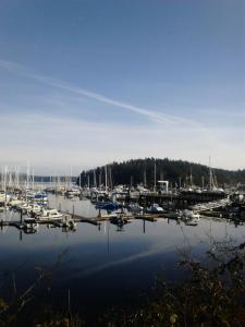 Friday Harbor copy