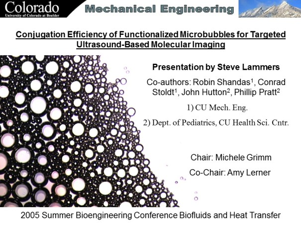 Conjugation Efficiency of Functionalized Microbubbles for Targeted Ultrasound-Based Molecular Imaging