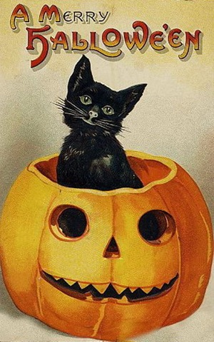 vintage-halloween-black-cat-pumpkin-card