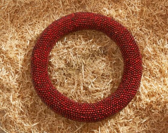 Artful Cranberry 10.21.14 3983