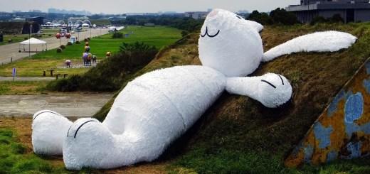 fallen rabbit