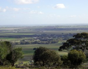 By Bus Through the Barossa